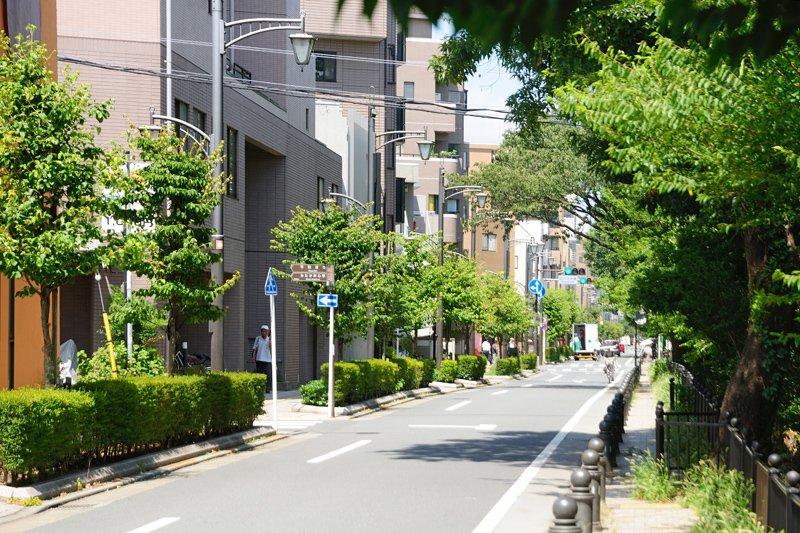 222235_03-02kichijyouji