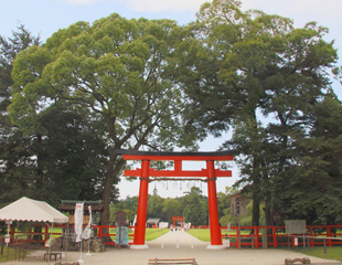 京都(北山・下鴨)エリア