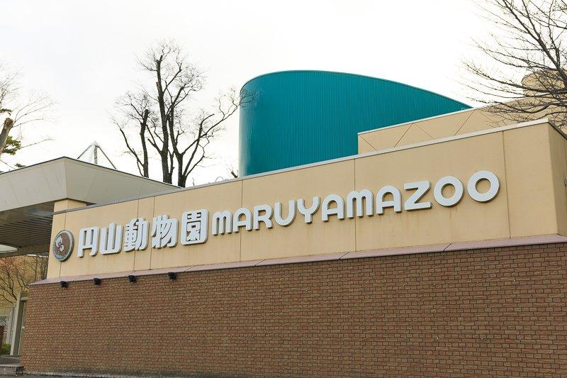 259902_07-01maruyama1