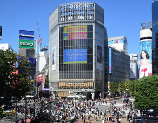 渋谷エリア