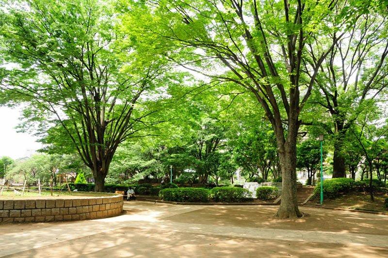 埼玉県の行政の中心地であり、文教エリアとしても栄えたさいたま市浦和エリア