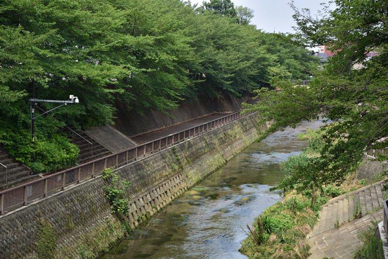 石神井川(南田中橋付近)