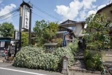 231835_21-01Arashiyama