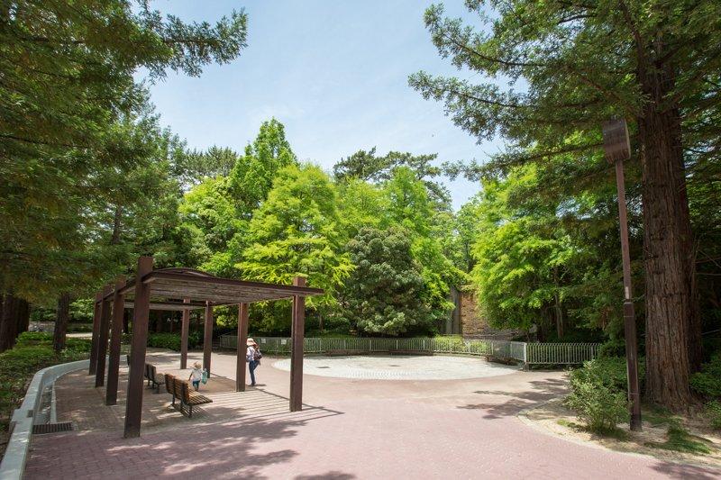 225204_06-03shukugawa