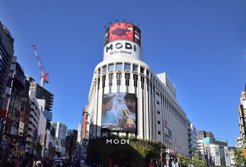 262447_08-01shibuya