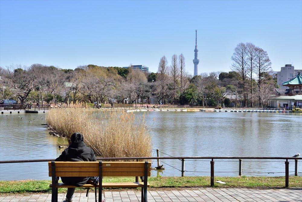 187126_00-uenokouen_image09