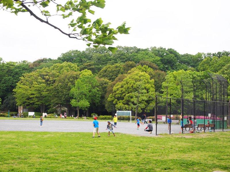 野球の練習をする子どもたち